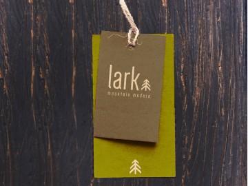 Lark-logo
